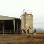 Tin tức trong ngày - Bảo vệ trại bò sữa TH chết trong bể nước