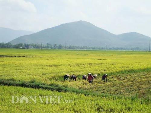 Bình minh trên núi mắng Trời ở Bình Định - 6
