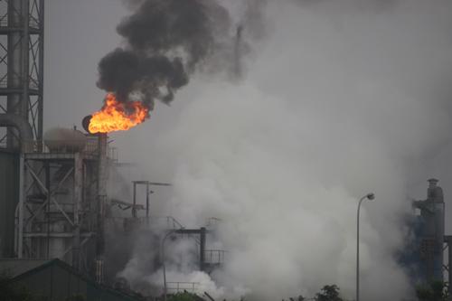 Quảng Trị: Cháy lớn tại nhà máy chế biến gỗ - 1