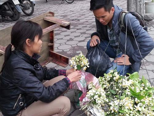 Hoa bưởi giá 250.000 đồng/kg hút khách Hà Nội - 1