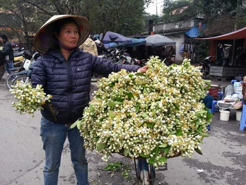 Hoa bưởi giá 250.000 đồng/kg hút khách Hà Nội - 3