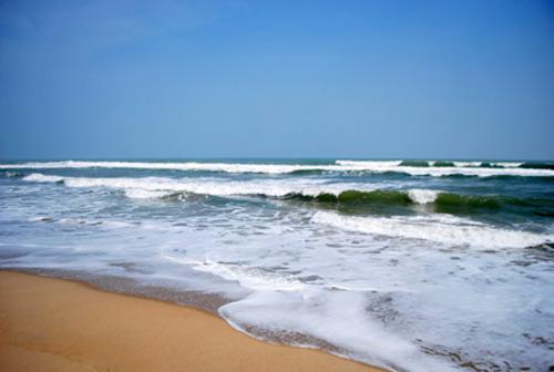 Gỏi cá trích miền quê biển Xuyên Mộc - 1
