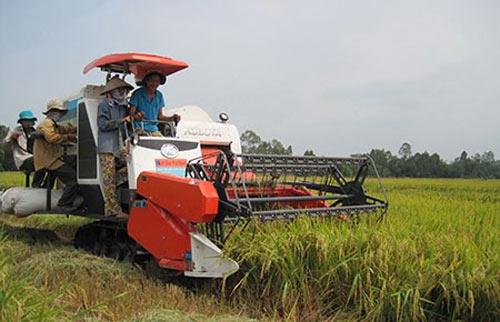 """Thái Lan bán tháo gạo: """"Phán"""" để tư lợi? - 1"""