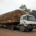 """Tin tức trong ngày - CSGT để """"xe vua"""" ngang nhiên chở gỗ phá quốc lộ?"""