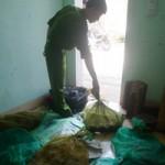 Tin tức trong ngày - Quảng Trị: Bắt vụ vận chuyển 24 cá thể rắn quý hiếm
