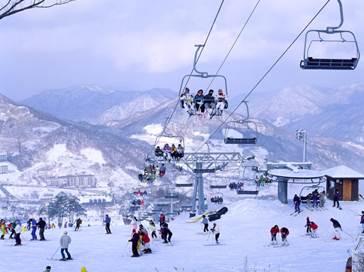 Mùa xuân trượt tuyết xứ Hàn - 1