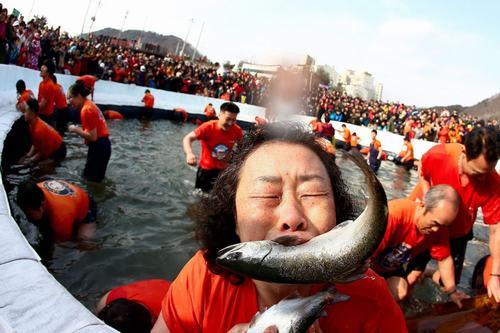 Độc đáo lễ hội câu cá bằng miệng tại Hàn Quốc - 4