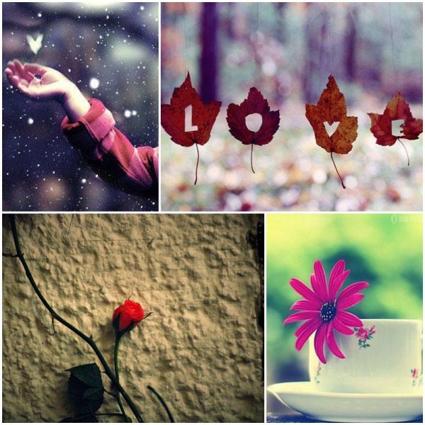Thơ tình: Mùa yêu thương