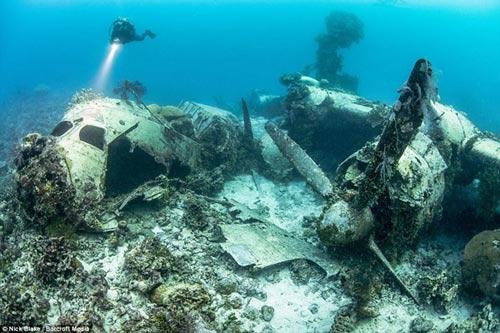 """""""Nghĩa địa"""" máy bay khổng lồ dưới đáy biển ở Nhật - 1"""