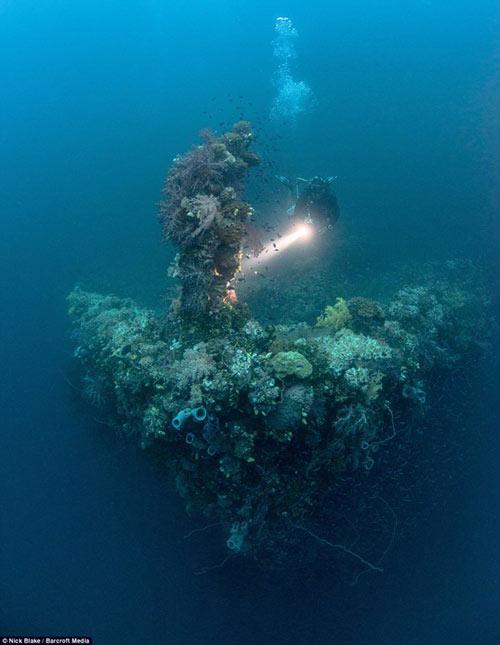 """""""Nghĩa địa"""" máy bay khổng lồ dưới đáy biển ở Nhật - 8"""