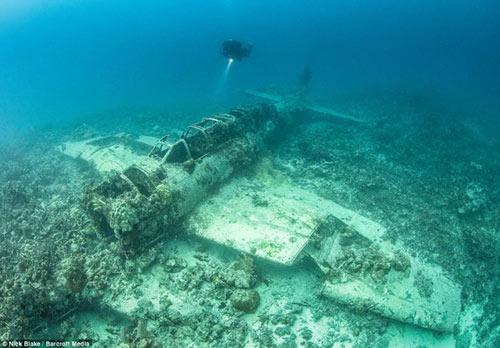 """""""Nghĩa địa"""" máy bay khổng lồ dưới đáy biển ở Nhật - 5"""