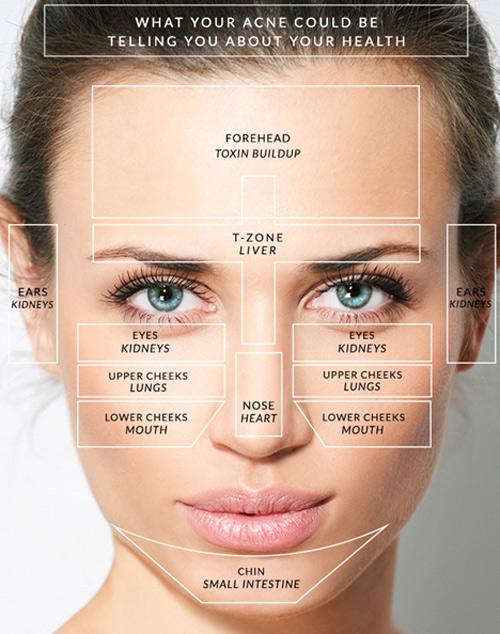 Bắt bệnh dựa theo vị trí mọc mụn trên khuôn mặt - 1
