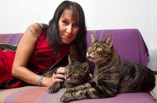 Người phụ nữ cưới 2 chú mèo trong hơn 10 năm liền - 1