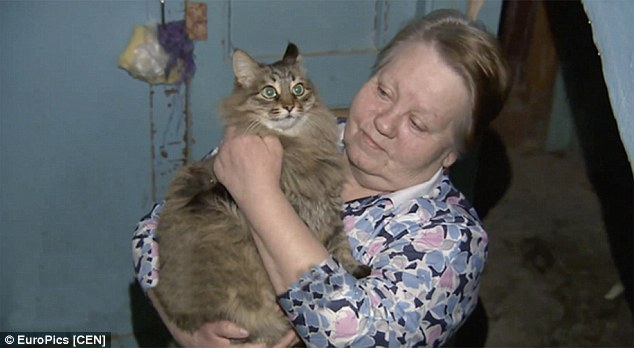 Chú mèo cứu sống em bé bị bỏ rơi trong giá lạnh - 1