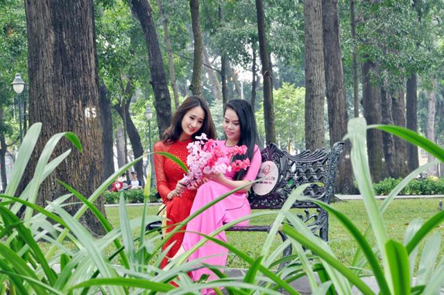 Hoa mai, đào khoe sắc rực rỡ giữa Sài Gòn - 12