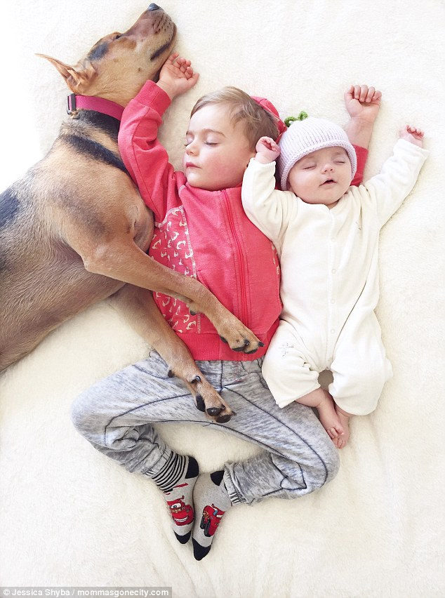 Những tư thế ngủ đáng yêu của hai anh em và chú chó
