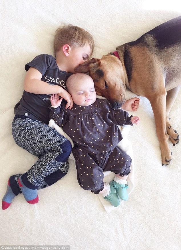 Những tư thế ngủ đáng yêu của hai anh em và chú chó - 2