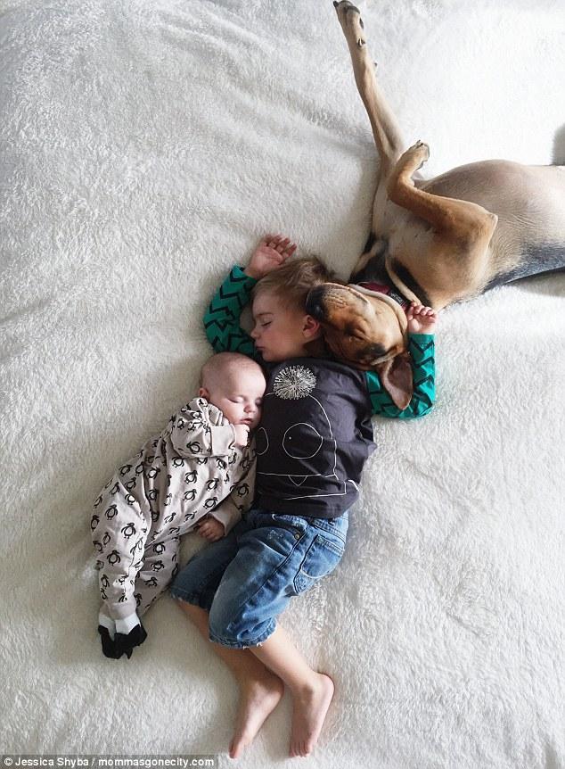 Những tư thế ngủ đáng yêu của hai anh em và chú chó - 5