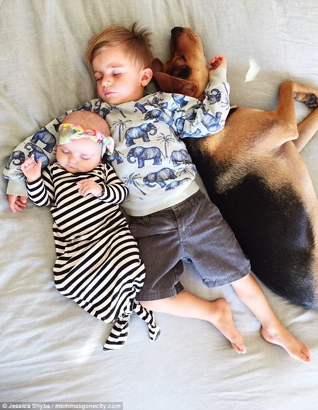 Những tư thế ngủ đáng yêu của hai anh em và chú chó - 3
