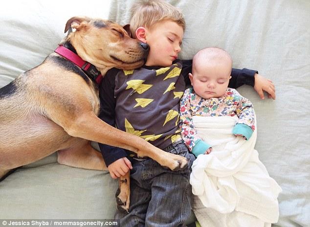 Những tư thế ngủ đáng yêu của hai anh em và chú chó - 6