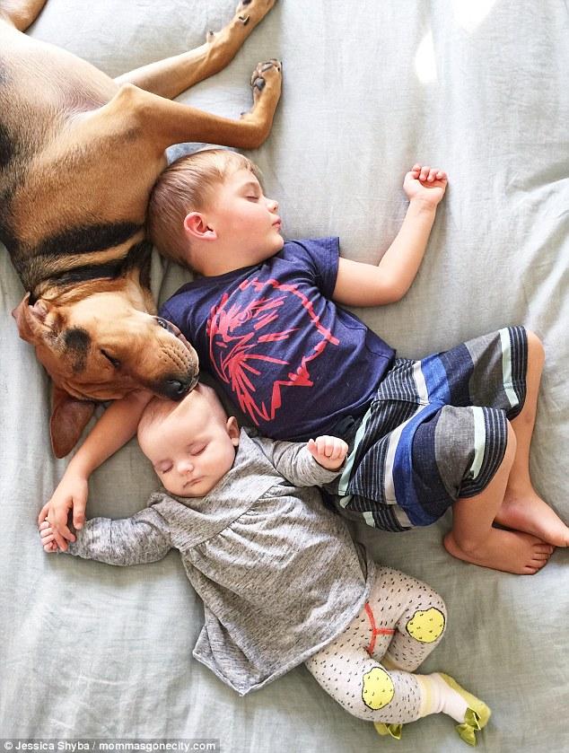 Những tư thế ngủ đáng yêu của hai anh em và chú chó - 4