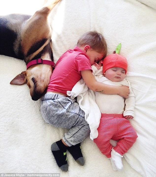 Những tư thế ngủ đáng yêu của hai anh em và chú chó - 8