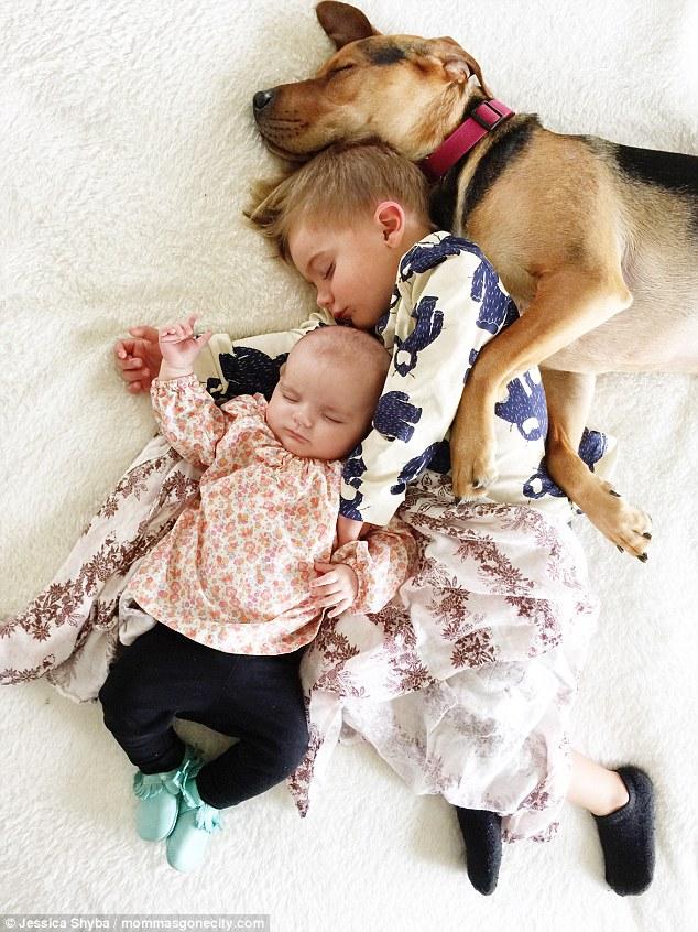 Những tư thế ngủ đáng yêu của hai anh em và chú chó - 9