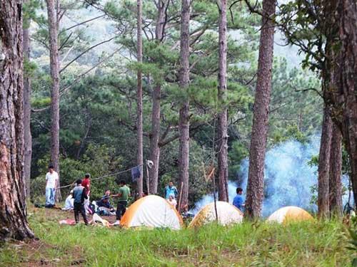 """Chinh phục """"nóc nhà"""" Lâm Đồng và ngủ giữa rừng thông - 8"""
