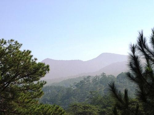 """Chinh phục """"nóc nhà"""" Lâm Đồng và ngủ giữa rừng thông - 1"""