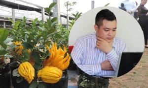 Chàng trai thu nhập hơn 1 tỷ mỗi năm nhờ cây Phật thủ bonsai