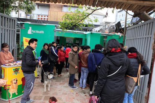 Hàng trăm bạn trẻ HN đưa chó, mèo đi khám bệnh miễn phí - 2
