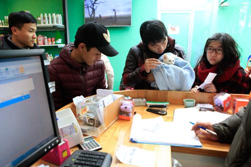 Hàng trăm bạn trẻ HN đưa chó, mèo đi khám bệnh miễn phí - 15