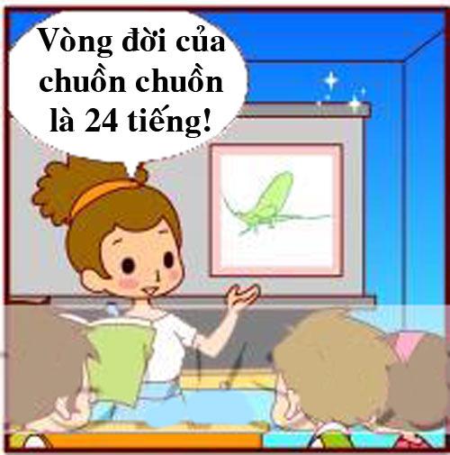 Truyện tranh: Tiết học về chuồn chuồn - 1
