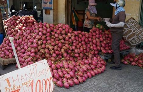 Trái cây Việt bị rẻ rúng ở nước ngoài 3
