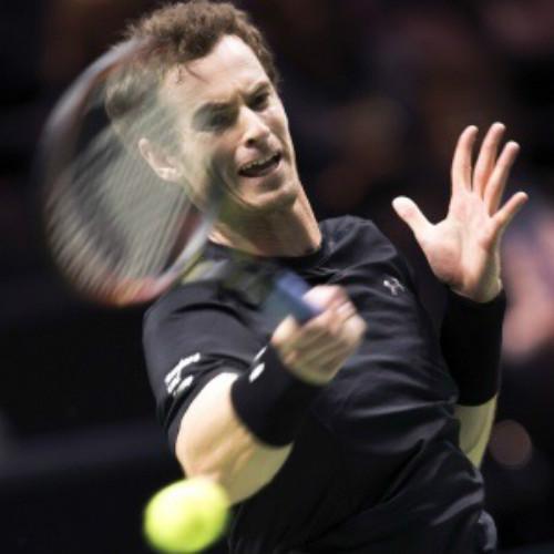 Murray & Berdych trước ngưỡng bán kết (Rotterdam Open) - 1