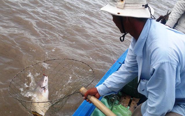 """Phượt cùng """"câu thủ"""" trên sông Tam Giang - 1"""