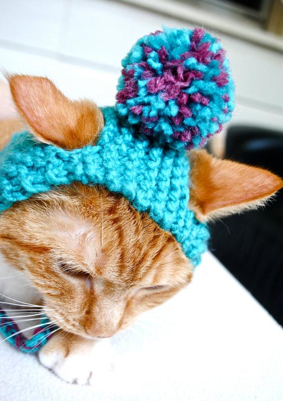 Thời trang chó mèo cận tết: Bạc triệu vẫn đắt hàng - 7