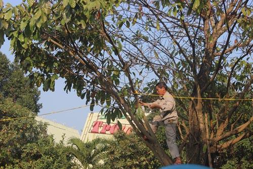 Người dân rơi nước mắt khi nghe tin ông Nguyễn Bá Thanh mất - 5