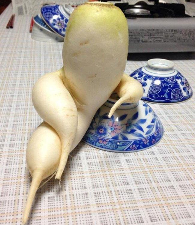 Bộ sưu tập rau củ quả Tết hài hước nhất quả đất - 10