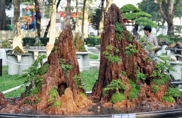 """Chiêm ngưỡng những """"ngọn núi"""" giữa trung tâm Sài Gòn - 9"""