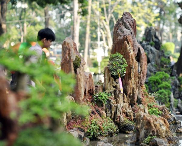 """Chiêm ngưỡng những """"ngọn núi"""" giữa trung tâm Sài Gòn - 12"""