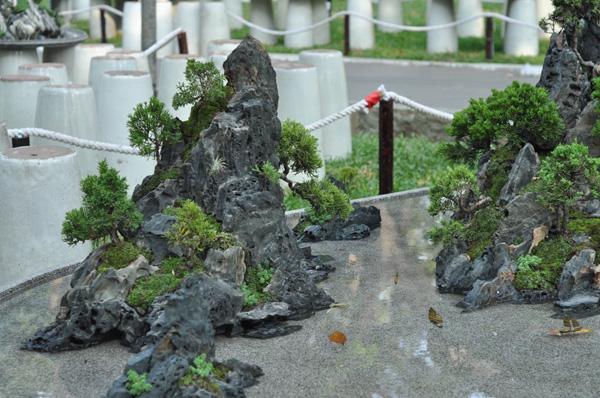 """Chiêm ngưỡng những """"ngọn núi"""" giữa trung tâm Sài Gòn - 16"""