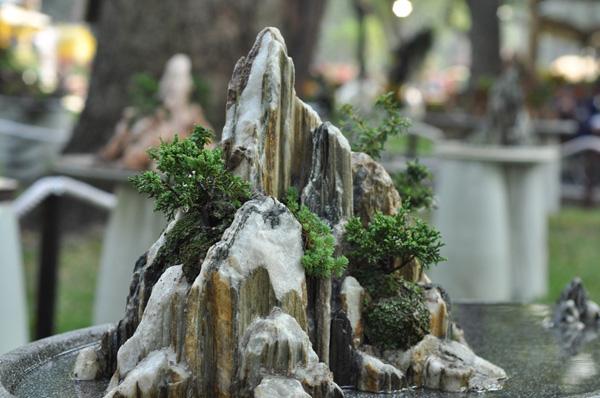 """Chiêm ngưỡng những """"ngọn núi"""" giữa trung tâm Sài Gòn - 15"""
