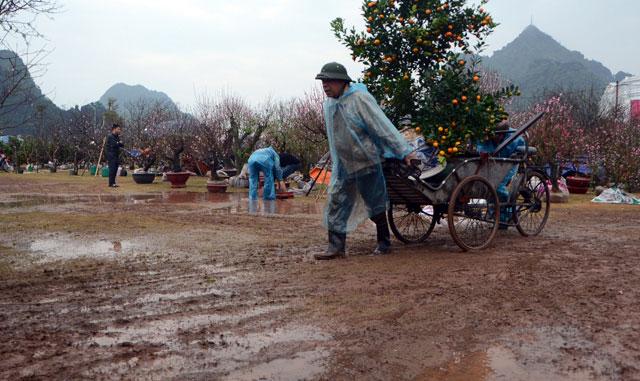 Chợ hoa xuân Hạ Long: Đào, mai tan tác dưới mưa rào - 2