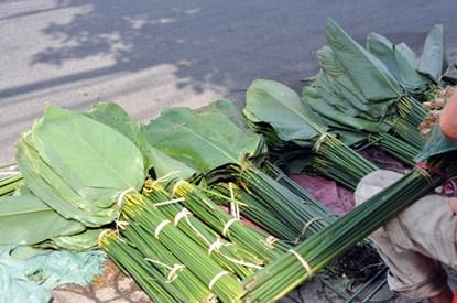 """Phiên chợ lá độc đáo """"năm 1 lần"""" giữa Sài Gòn - 3"""