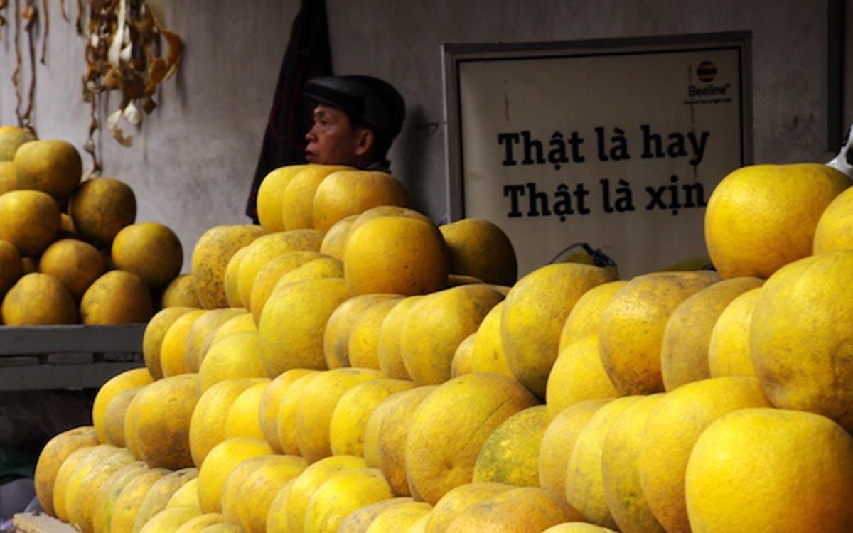 """Bí quyết chọn """"trái đặc sản Hà thành"""" chính hiệu - 1"""