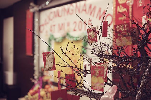Người Việt tại Nhật náo nức đón Tết Ất Mùi 2015 - 2