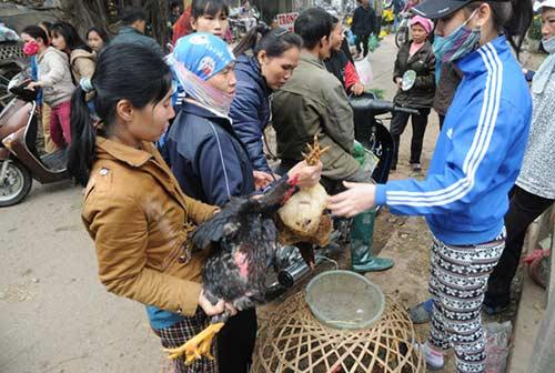 30 Tết đi chợ quê truyền thống ở Thủ đô - 9