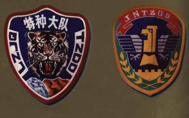 Giải mã 10 lực lượng đặc biệt của quân đội Trung Quốc - 2