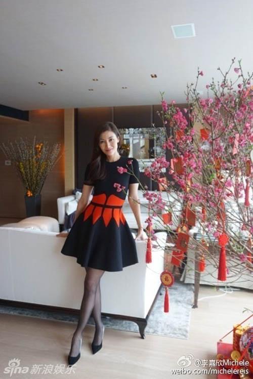 Mỹ nam mỹ nữ Hoa hào hứng du xuân, đón tết - 13